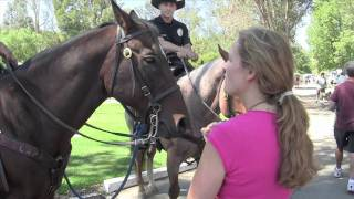 The Pet Psychic Talks to Police Horses