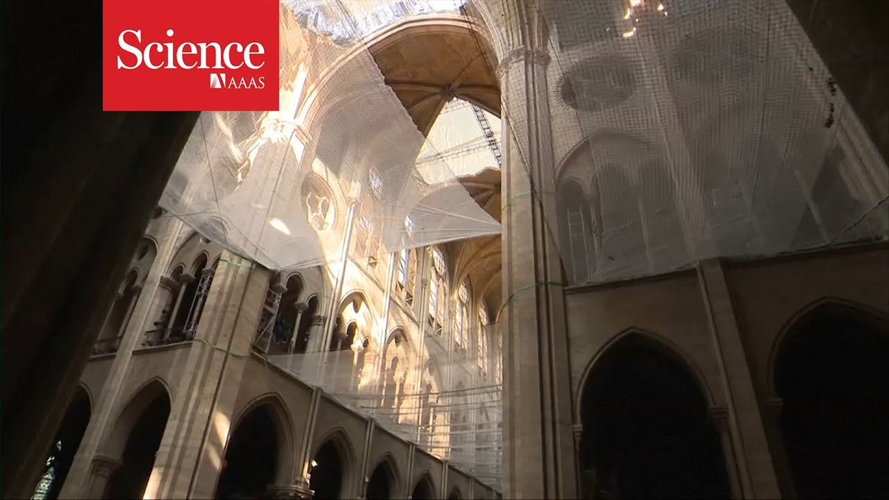 A Look Inside The Restoration Of Notre Dame Cathedral Youtube
