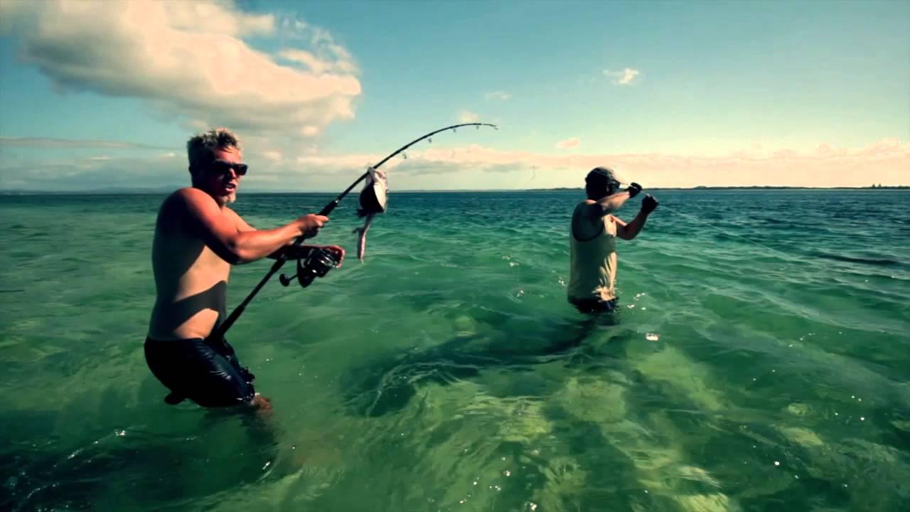 Shark fishing new zealand 2015 youtube for Shark fishing from shore