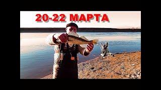 Рыбалка Двое суток на реке с Больничкой и Леопольдом Судак и Щука на живца Копченый судак