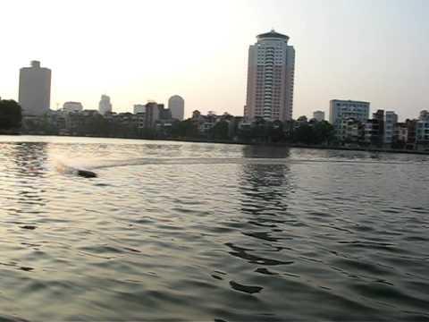Cano hồ Hoàng Cầu