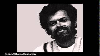Terence Mckenna Rimshots 065   Novelty is the life of the Party