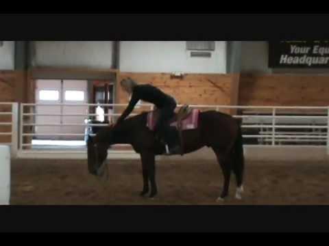 Charmayne James Demo Mn Equestrian Center Part 2 Youtube