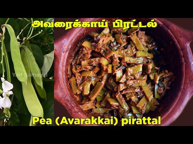 சுவையான அவரைக்காய் பிரட்டல் | Jaffna style Avarakai peratal in tamil | Pea curry in tamil