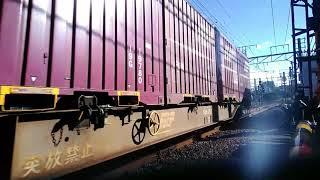 2018/05/23 都営12-600形(12-691F)甲種輸送と貨物列車9本!