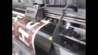 Самая быстрая интерьерная печать на дешевом китайском плоттере!(Печать реального коммерческого заказа с отличным качеством в 4 прохода, двумя головками Epson DX-5. На китайской..., 2014-03-02T10:28:53.000Z)