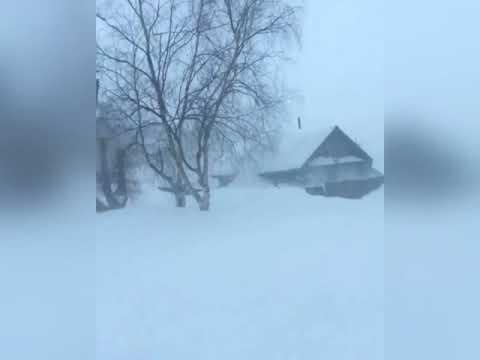 Жуткая пурга в Николаевске на Амуре 17 января