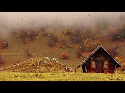 Storm Sleep Sounds 😴 Thunderstorm & Rain Sounds for Sleeping, Relaxation & Study | Insomnia Help💤