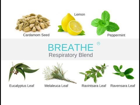 Breathe Easy Air Essential Oil Respiratory Blend - Online Cl