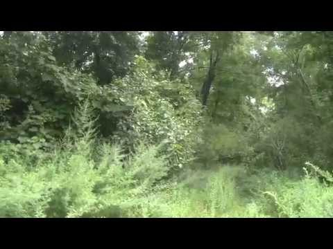 Neponset River Greenway Canton MA Farnham-Connolly Part 1.
