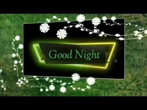 Good Night Status Animation Good Night Videos For