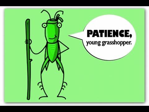 Grasshopper Vape Tips and Tricks