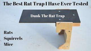 the all time best rat trap i have ever tested dunk the rat trap in action