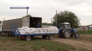 «Астрахань 24» выяснял, как отразилось введение эмбарго на местных фермерах