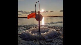 Рыбалка на жерлицы в камышах Озеро НЕРО