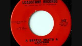 Paula Lamont  - A Beatle Meets A Lady Bug