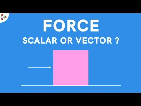 Physics - Force - Scalar or Vector?