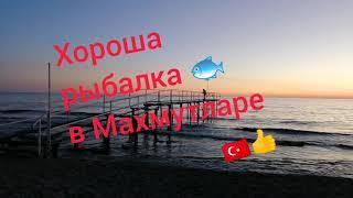 Турция 2021г Аланья Махмутлар Морская рыбалка