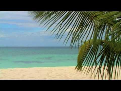 Dr. Arnd Stein - Am Meer (GEMA-freie Entspannungsmusik + Video)