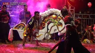 Perang Celeng Sewu Kreasi - MAYANGKORO ORIGINAL Live Sumber Nanas Ponggok Blitar 2019