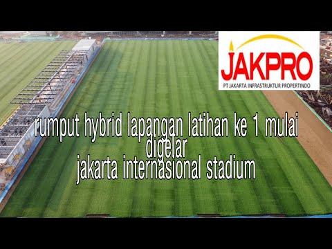 Update Progres Pemasangan Rumput Hybrid Lapangan Latihan Ke 1 Jakarta Internasional Stadium