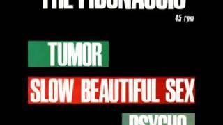 The Fibonaccis - Psycho (Bernard Herrmann Cover)