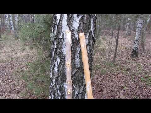 Сделал палки для скандинавской ходьбы своими руками))