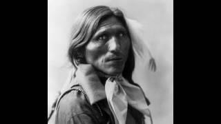 Goose Face, Dakota Sioux, by Heyn Photo, ca  1900 Portrait