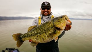 Raw Fishing Footage on Clearlake! Giant Bass Caught!! Spring Bass Fishing!