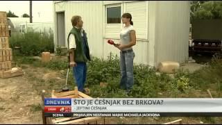 Slavonski domaći češnjak - OPG Kurcin...