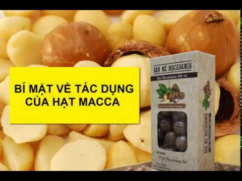 Tác dụng của hạt macca - Hạt macca BAN ME MACADAMIA