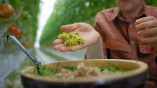 Chłodnik z pomidorów – przepis idealny na upały! [Z gruntu zdrowo]