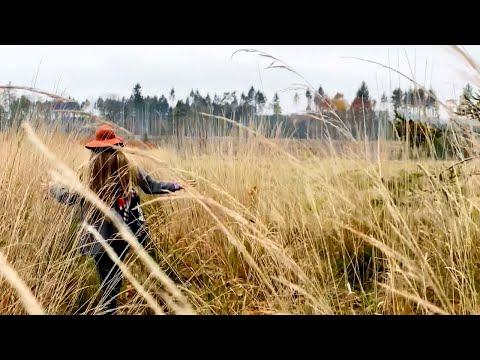 Relaxační procházka | jen příroda + hudba
