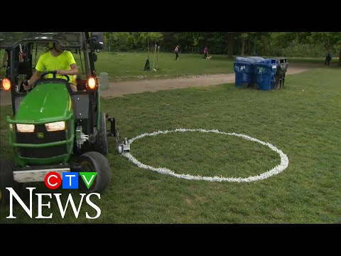 Toronto using painted circles to separate people at park