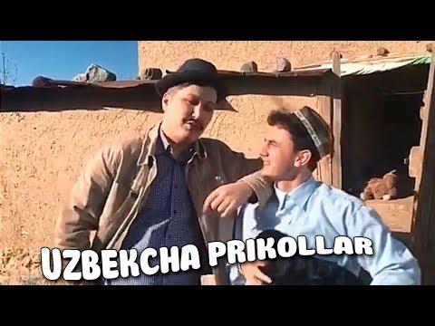 ENG DODA UZBEKCHA PRIKOLLAR - YANGI TELEGRAM PRIKOLLAR #224 / UZBEK PRIKOL