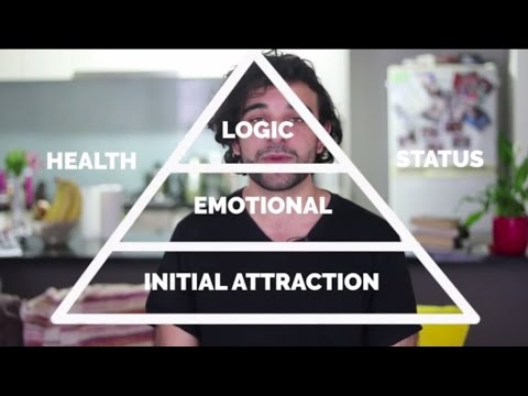Does Love at First Sight Exist? (Ask Harvey #8) - The Attraction Pyramid