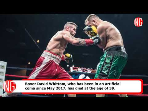 Boxer David Whittom Dies, Opponent Questions Referee After Fight