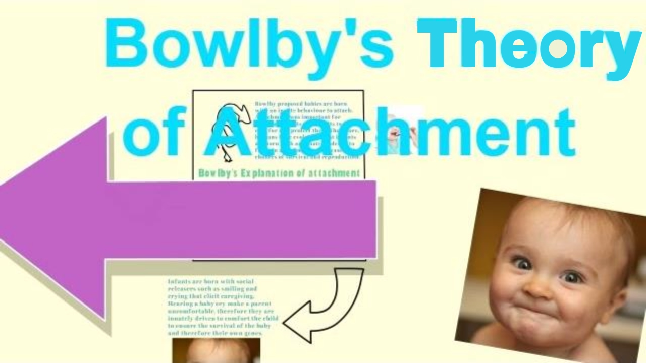 bowlby s attachment theory Bowlby's theory is sometimes referred to as an evolutionary theory evolutionary psychology suggests that human behaviour and phenomena can be explained.