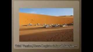 excursion au senegal tourisme vacances senetrip