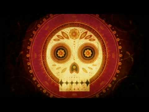 Viva Calaca The Day Of The Dead Official