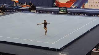 Shametko Aleksandra  Floor  final