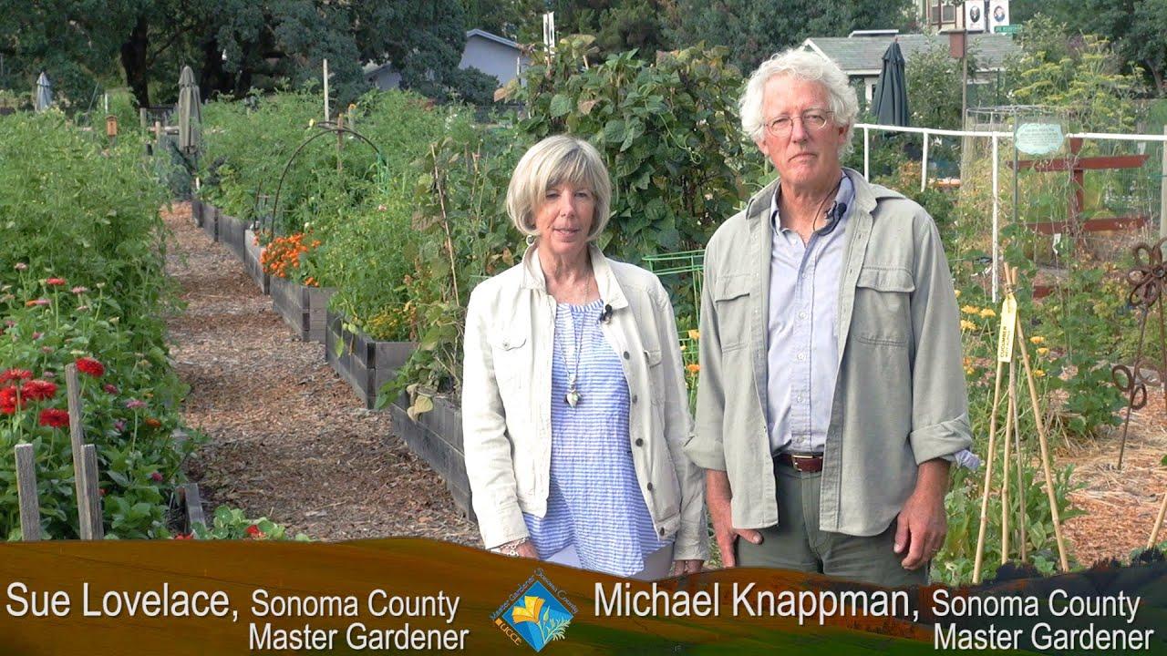 maxresdefault - University Of California Master Gardener Program