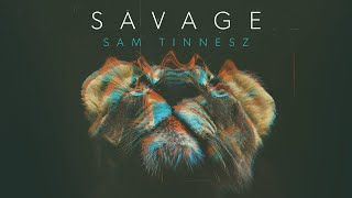 Sam Tinnesz Savage Audio.mp3