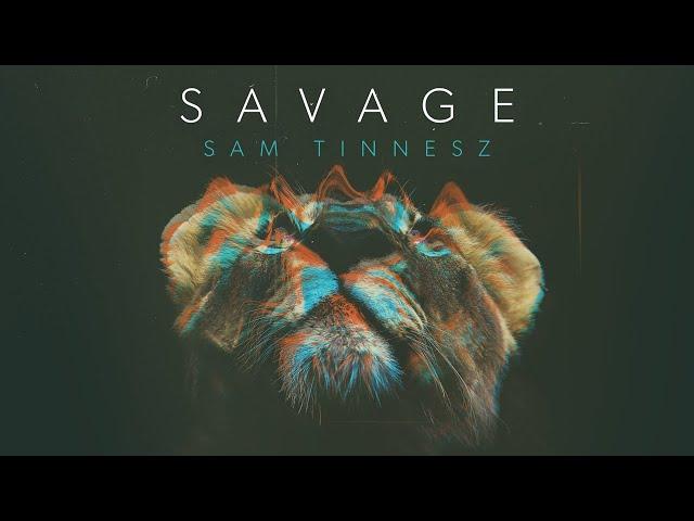 Sam Tinnesz - Savage