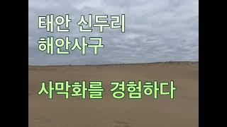 해안사구. 사막을 경험하다