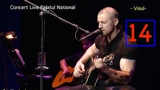 Pavel Stratan - Visul - (Palatul National - concert live)