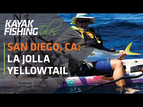 Kayak Fish For Yellowtail In La Jolla, San Diego, California