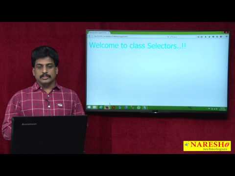 CSS Selectors | Web Technologies Tutorial  | Mr.Subbaraju