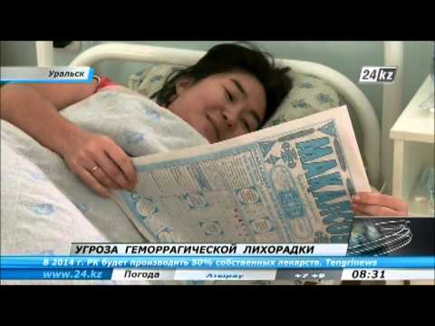 геморрагической лихорадки
