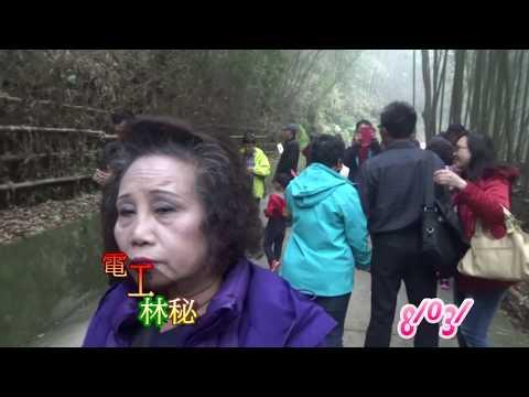 嵐山竹林秘境和烏嘎彥景觀台的參觀               2019/02/23